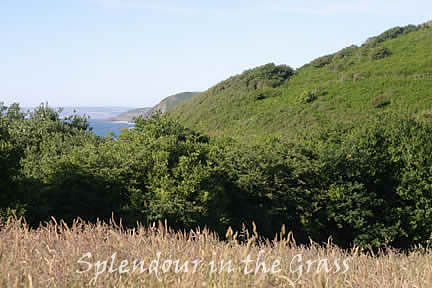 On a clear day - take a walk on the South West Coast Path/View of North Devon Heritage Coast from Peppercombe
