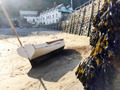 North Devon Focus - Clovelly Events