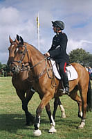Kings Troop Big Sheep Abbotsham  2002 photo copyright Pat Adams