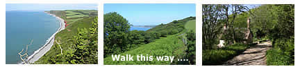 South West Coast Path - Peppercombe to Bucks Mills
