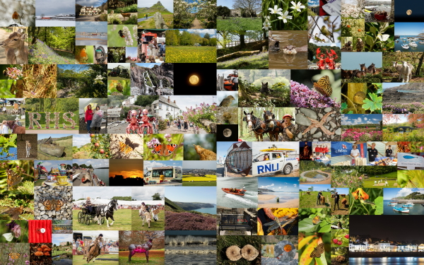 North Devon Focus Coast and Country Collage. Photo copyright Pat Adams (All rights reserved)