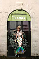 Artistic Licence - Old Gaiety Theatre Door - The colourful door knocker was on the door of another cottage in Irsha Street